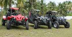 Buggy Tours in Dalaguete can take you to the mountains or the seaside. Take your pick and enjoy an exhilerating tour around Cebu's summer capital, Dalaguete.