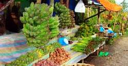 Buy fresh produce when touring the hills of Busay.