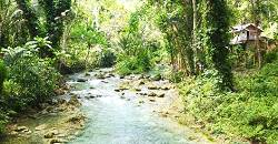 To get to the majestic Kawasan Falls, one needs to trek a short 30 minutes.