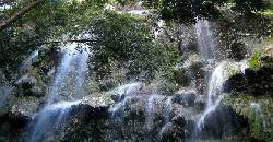 After swimming with the whalesharks, make it a point that you will get to visit Tumalog Falls in Oslob.