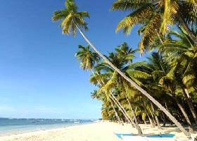 Beach Area, Alona Tropical Resort, Panglao Bohol Resort