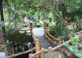 Lush Tropical Setting, Alona Tropical Resort, Panglao Bohol Resort