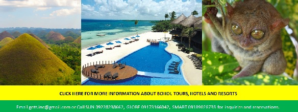 Bohol Tours and Travel Package