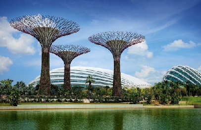 Newest attraction--the Gardens by the Bay is perfect for families and couples who want a pleasant stroll in the world's Garden City.