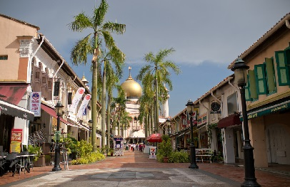 Kampong Glam is the Malay enclave where you can see mosques, buy nice fabrics, or have a fill of malay and middle eastern cuisine at Arab Street.
