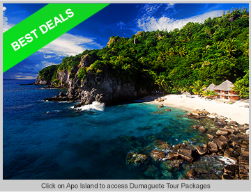 Green Earth Tours And Travel Cebu City Cebu